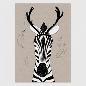 Zebra-studio-rainbow-prints