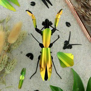 assembli-bidsprinkhaan-praying-mantis-mango