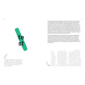 lannoo-boek-het-moederschap-met-twee-vingers-in-de-neus-en-een-middelvinger-in-de-lucht