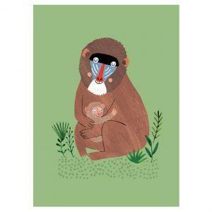 mandril-and-cub-petit-monkey