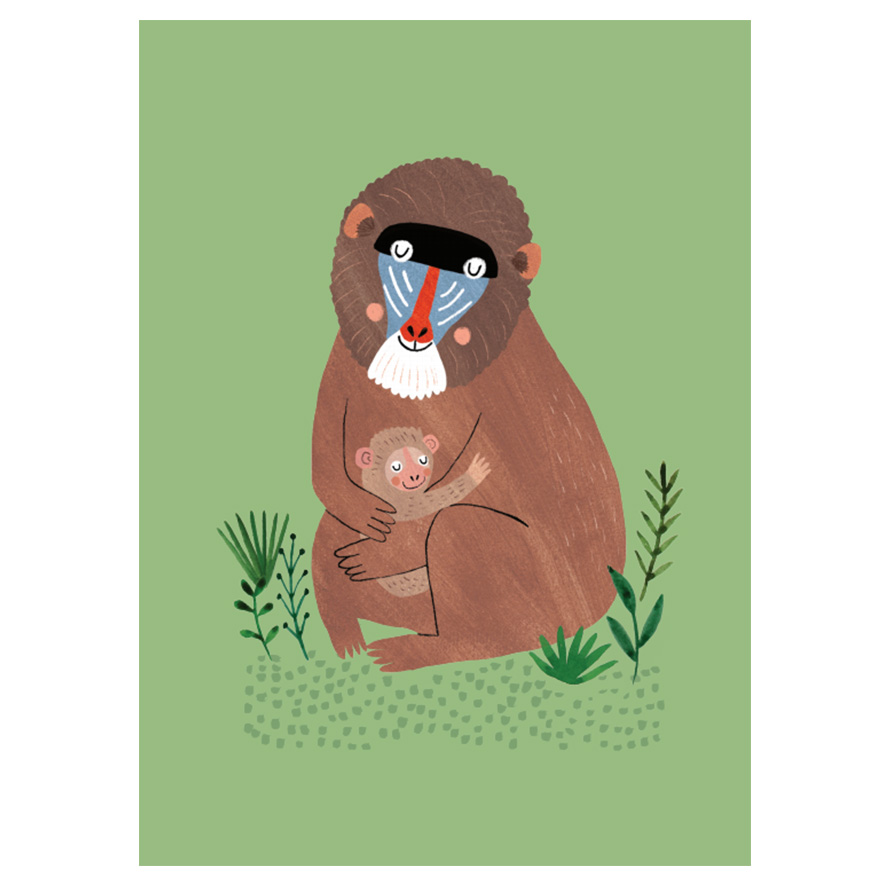 mandril-and-cub-petit-monkey
