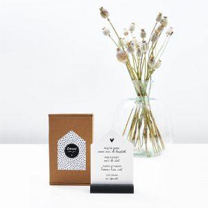 huisje-met-gedicht-in-cadeauverpakking-zomaar-zoedt